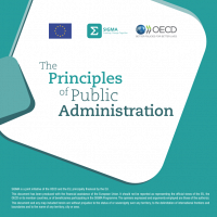 The Principles of Public Administration (Overview)